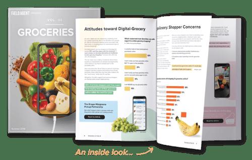Groceries 2.0 V3 Report