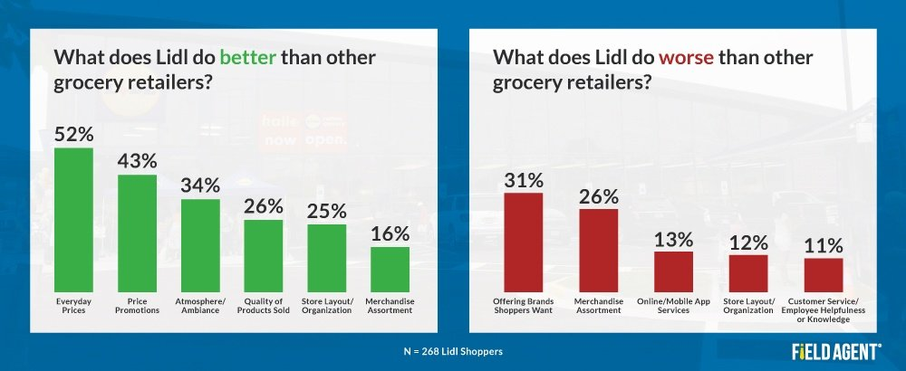 Lidl Shoppers Analysis Survey