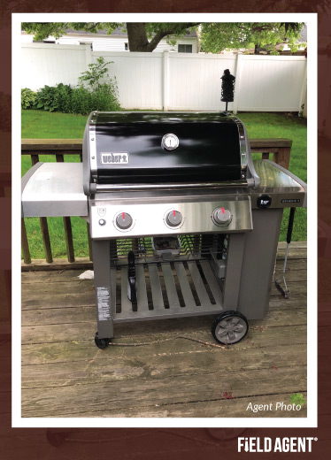 Outdoor Grilling Agent Photo