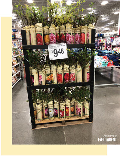 Spring-Product-Displays-Agent16