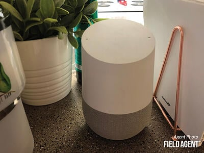 Google Home Agent Photo