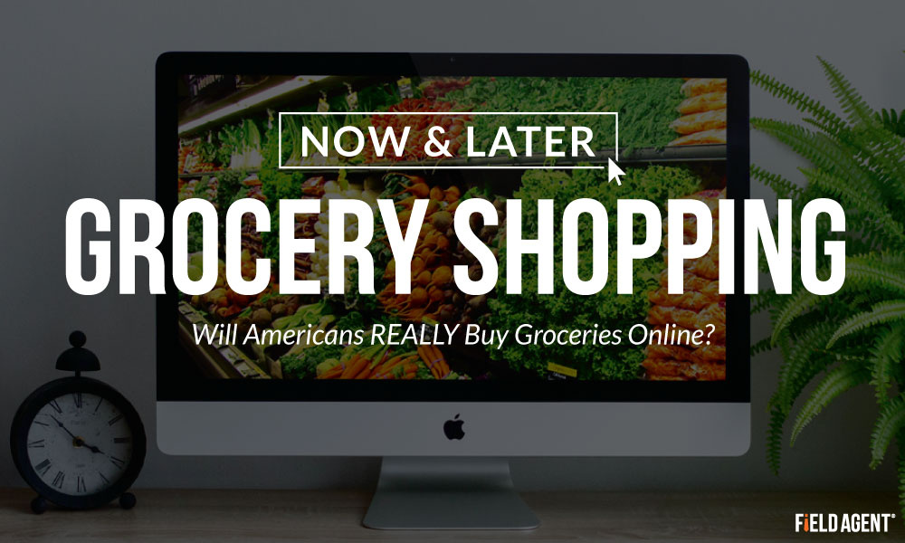 Grocery Shopping Now & Later: Will Americans REALLY Buy Online?