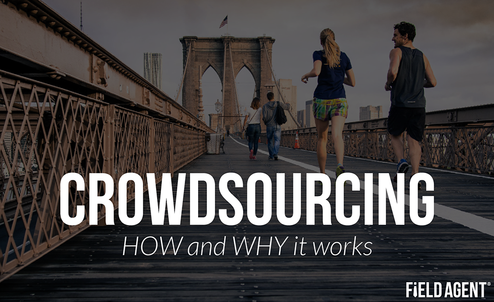 Crowdsourcing: How and Why it works